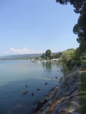 051 - Lago di Viverone